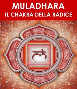 Muladhara Chakra della Radice Bari 2016